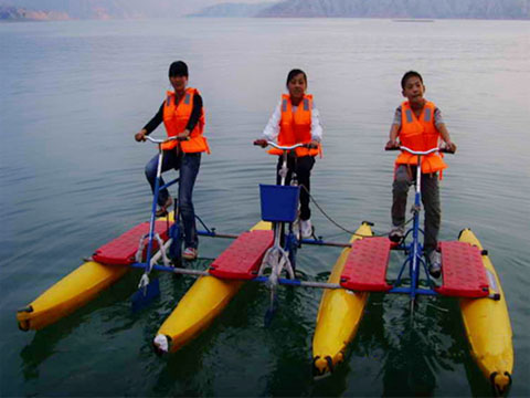 Beston Трехколесный Водный велосипед купить